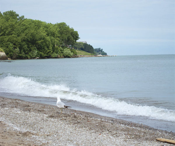 Lakefront 0816