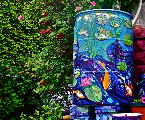 Summer Rain Barrel Project