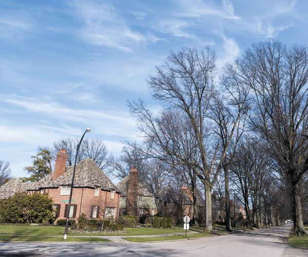 Forest Hill Neighborhood