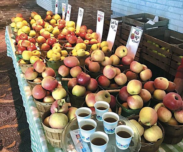 Progressive Farmer's Market