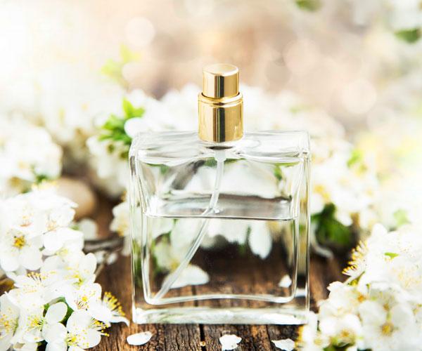 Dasha's Perfume