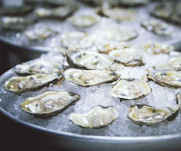 Five Oyster Spots To Slurp Up