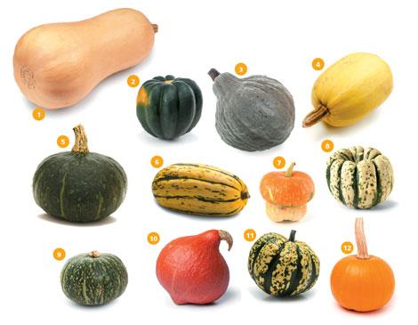 pumpkin vegetable soup