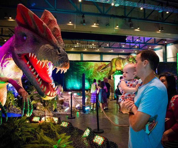 DiscovertheDinosaurs