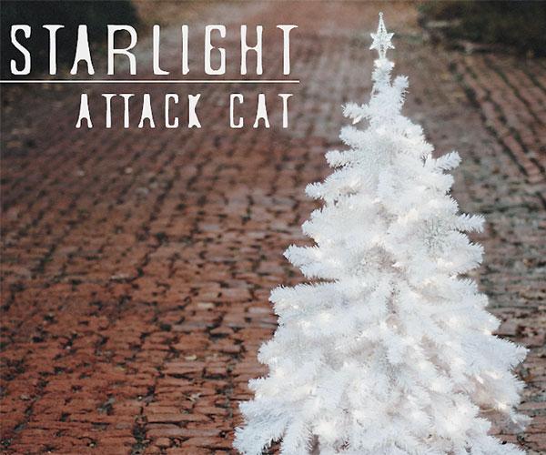 Starlight Attack Cat