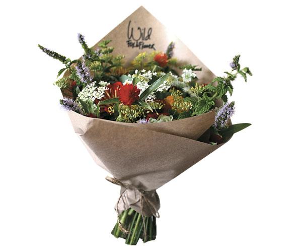 WIld Fox and Flower's CSA