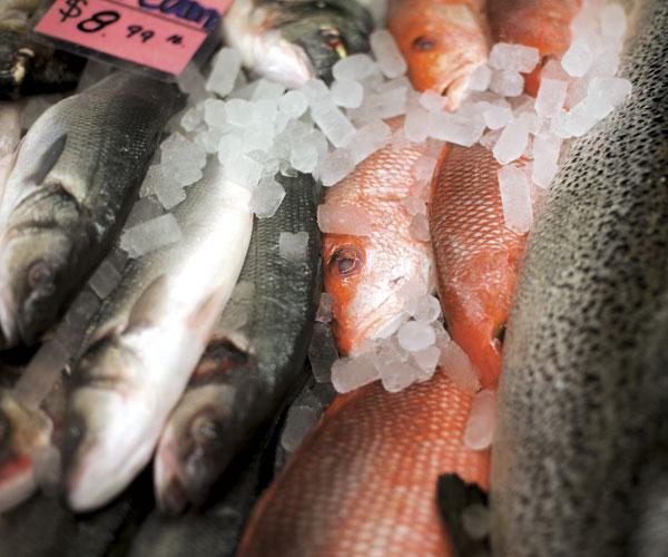 Kate's Fish West Side Market