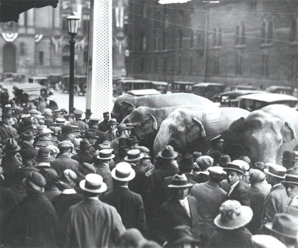 Cleveland 1924 RNC Elephants